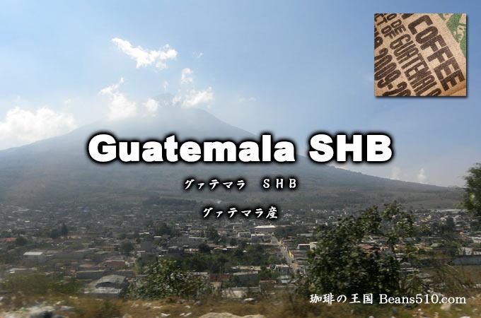 グァテマラSHB・ストリクトリーハードビーンズ、標高1350m以上で栽培