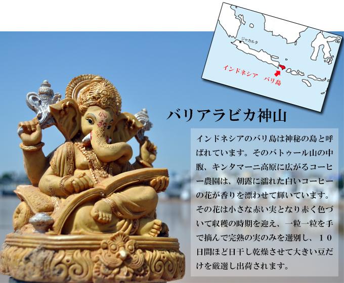 バリアラビカ神山・ハニープロセス